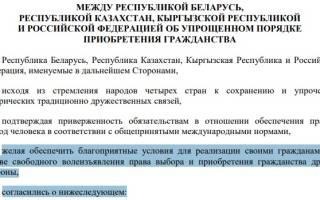 Как получить гражданство новорожденному ребенку в РФ