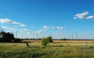 Образец соглашения переуступки права аренды лесного участка