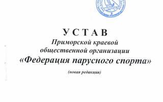 Образец устава общественной организации в РФ 2020