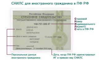 Оформление снилс для иностранных граждан м щелковская
